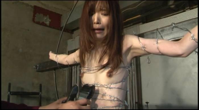 pain gate スタンガンアヤちゃん