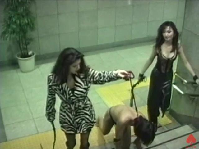 野外の階段で奴隷を四つん這いにして歩かせています