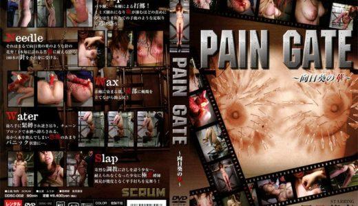マゾ女を針刺し!水責め!蝋燭で拷問する鬼畜SM調教【DDSC-002 PAIN GATE ~向日葵の華~】